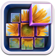 InstaMosaic - Photo Mosaic Generator